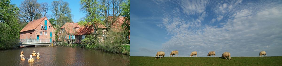 von links nach rechts: Heiligenrode Mühlenensemble | Schafe am Deich Ostfriesland Tourismus GmbH 2006